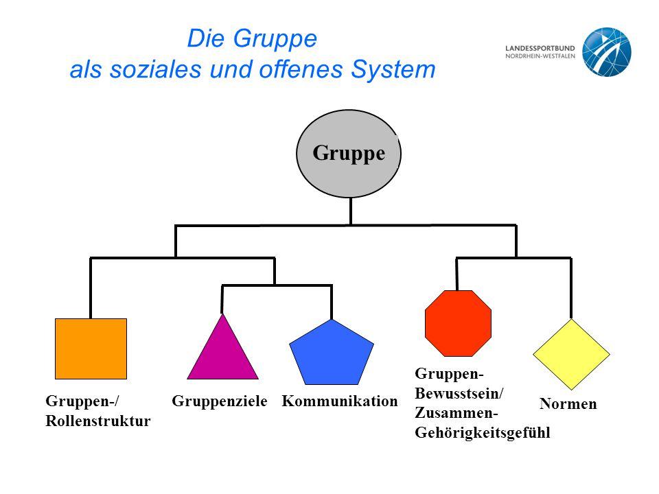 Die Gruppe als soziales und offenes System Gruppe Gruppen-/ Rollenstruktur GruppenzieleKommunikation Gruppen- Bewusstsein/ Zusammen- Gehörigkeitsgefühl Normen