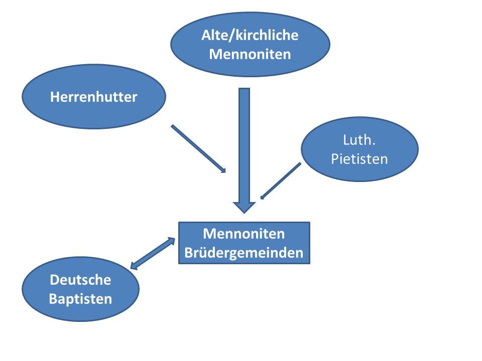 Herrenhutter Luth. Pietisten Deutsche Baptisten Alte/kirchliche Mennoniten Mennoniten Brüdergemeinden
