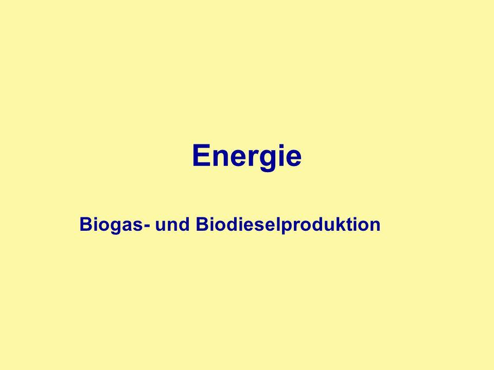 Energie Biogas- und Biodieselproduktion