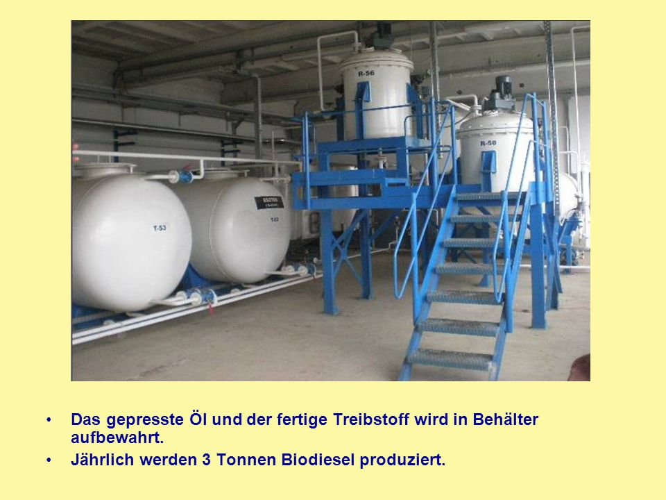 Das gepresste Öl und der fertige Treibstoff wird in Behälter aufbewahrt. Jährlich werden 3 Tonnen Biodiesel produziert.