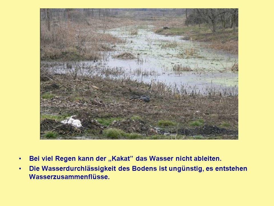 """Bei viel Regen kann der """"Kakat"""" das Wasser nicht ableiten. Die Wasserdurchlässigkeit des Bodens ist ungünstig, es entstehen Wasserzusammenflüsse."""