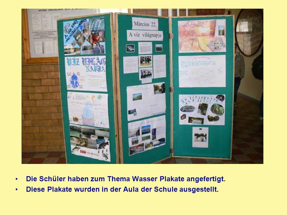 Die Schüler haben zum Thema Wasser Plakate angefertigt. Diese Plakate wurden in der Aula der Schule ausgestellt.
