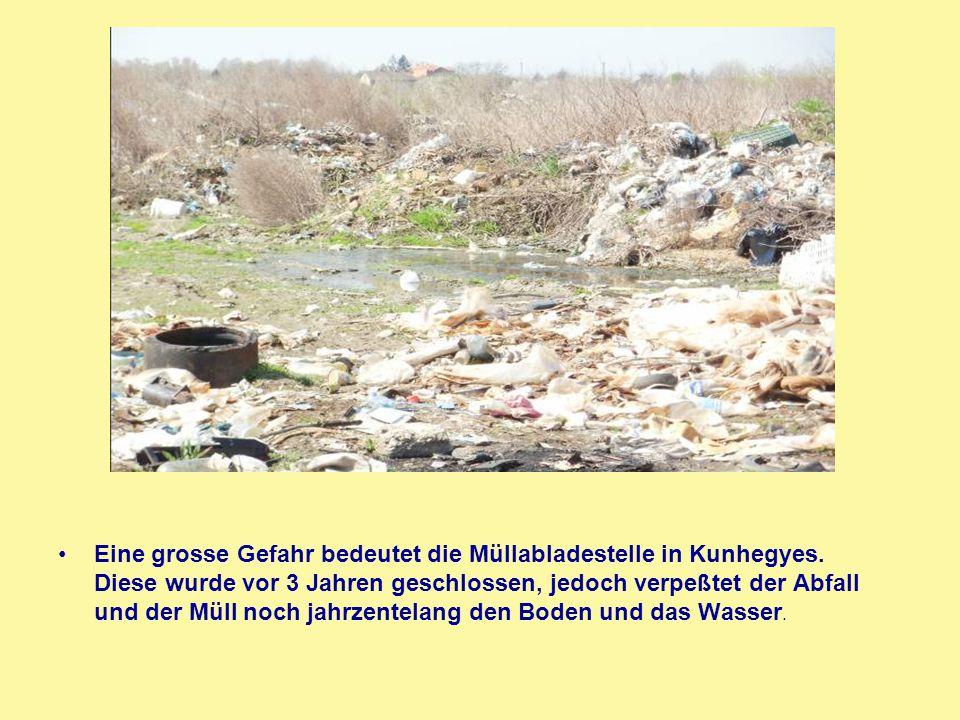 Eine grosse Gefahr bedeutet die Müllabladestelle in Kunhegyes. Diese wurde vor 3 Jahren geschlossen, jedoch verpeßtet der Abfall und der Müll noch jah