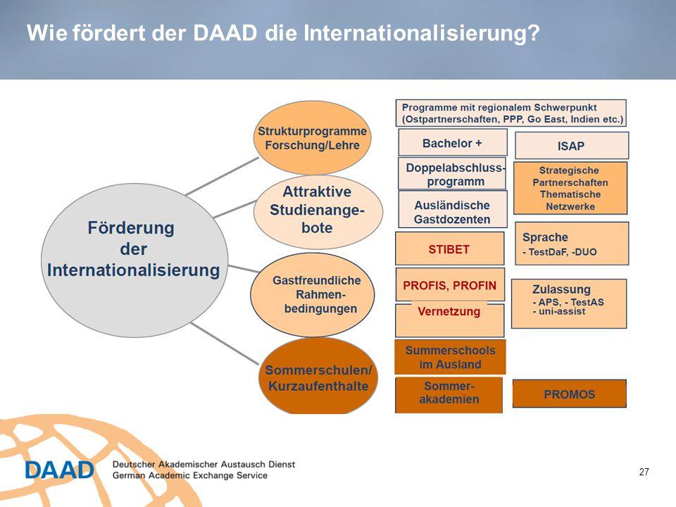 Wie fördert der DAAD die Internationalisierung? 27