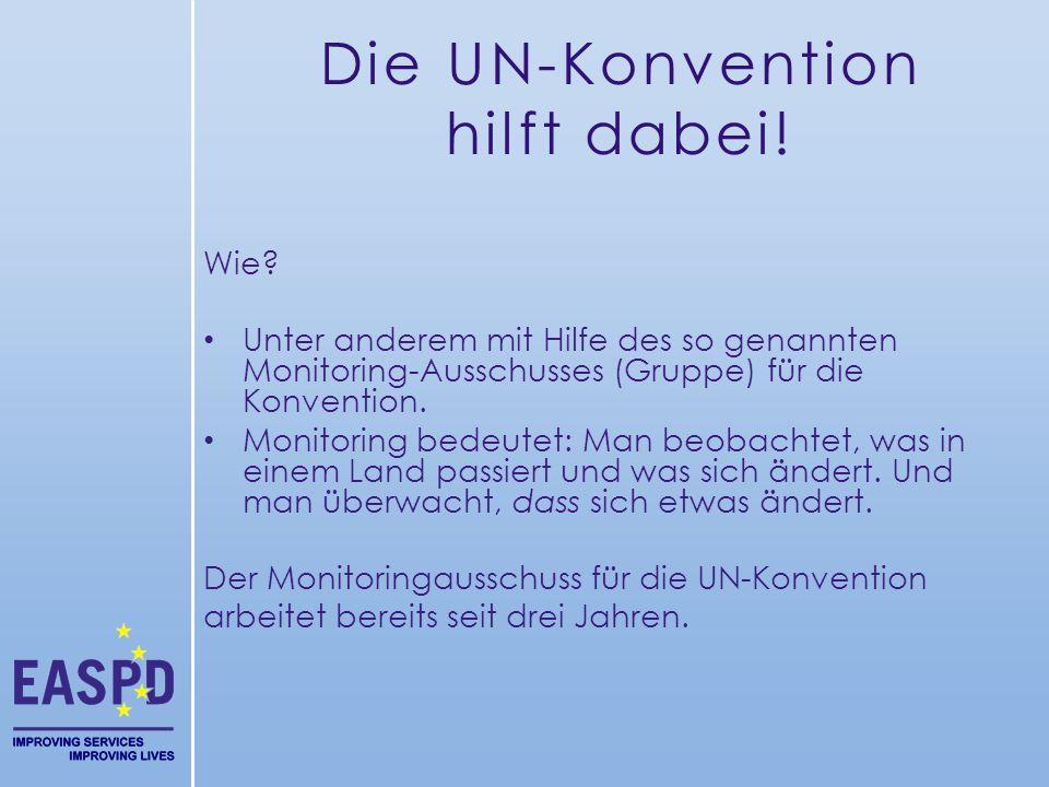Wie? Unter anderem mit Hilfe des so genannten Monitoring-Ausschusses (Gruppe) für die Konvention. Monitoring bedeutet: Man beobachtet, was in einem La