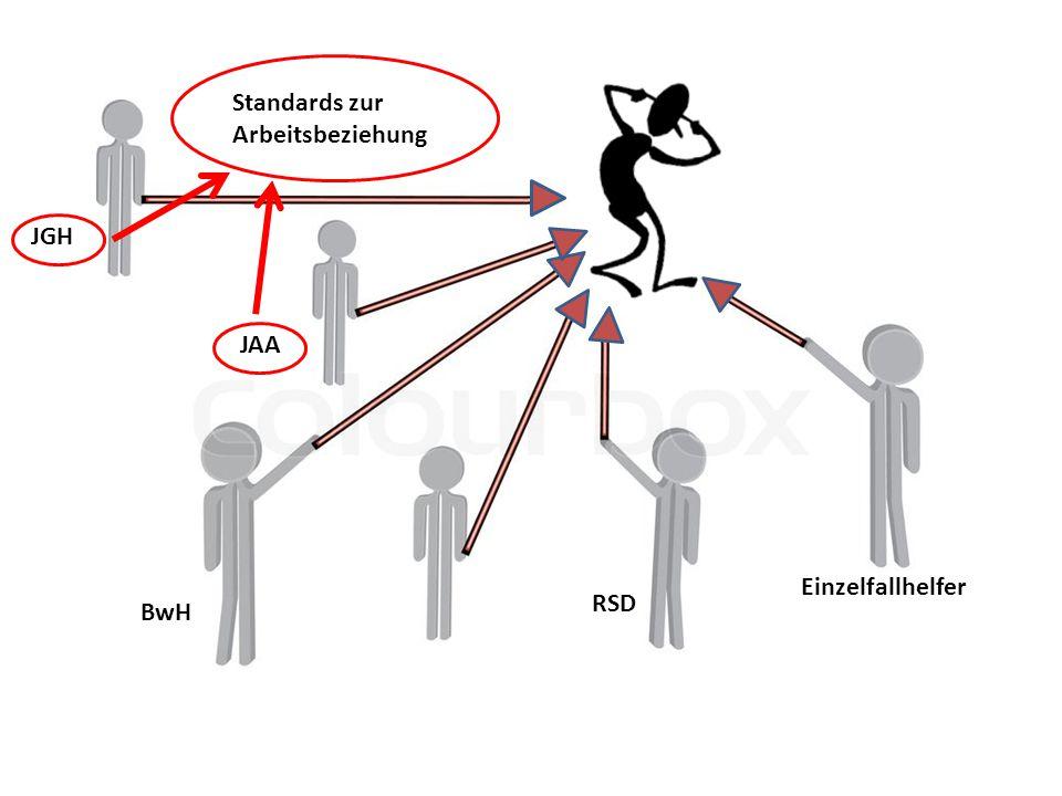 BwH RSD JGH Einzelfallhelfer JAA Standards zur Arbeitsbeziehung