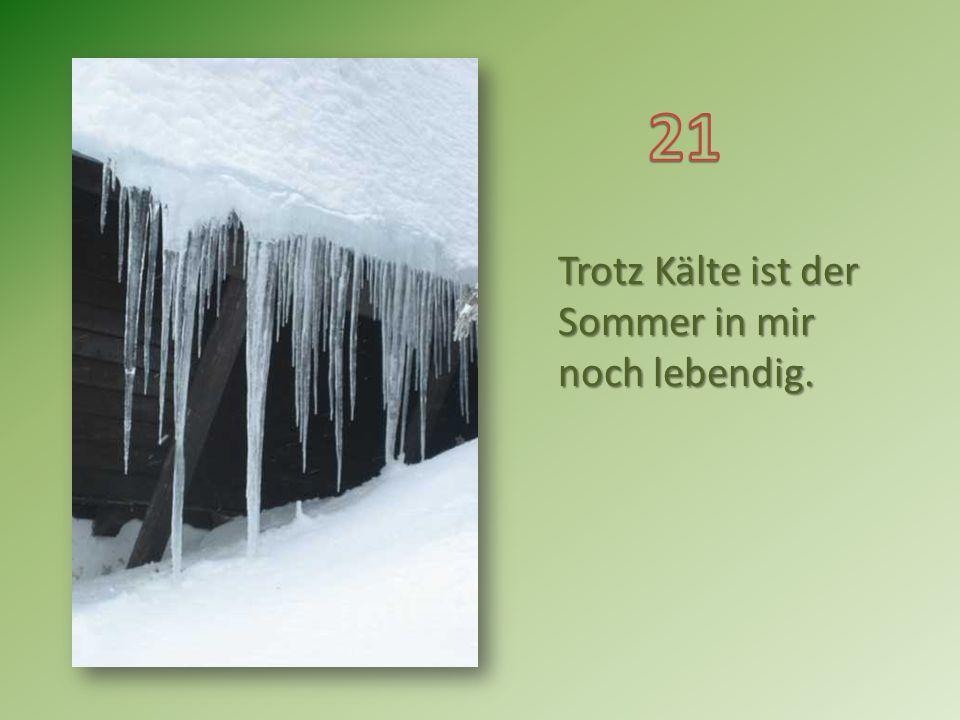 Weihnachten offenbart die Temperaturen im Umgang der Menschen untereinander. Karl Lehmann