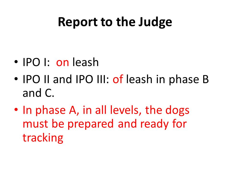 Report to the Judge IPO I: on leash IPO II and IPO III: of leash in phase B and C.