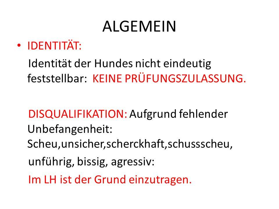 ALGEMEIN IDENTITÄT: Identität der Hundes nicht eindeutig feststellbar: KEINE PRÜFUNGSZULASSUNG.