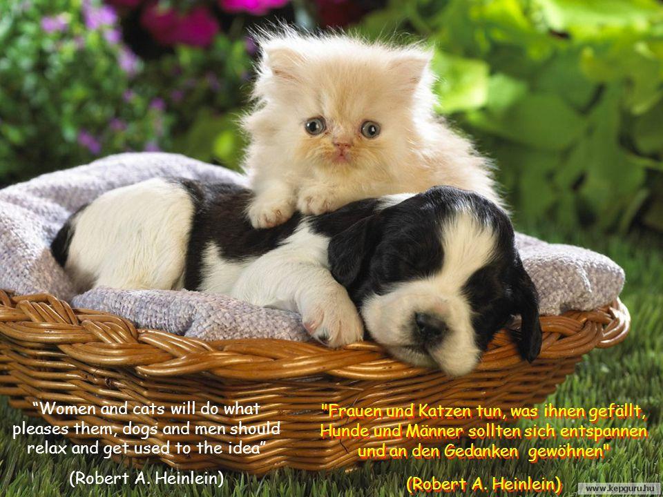 """Do not accept the admiration of your dog as an obvious conclusion that you are wonderful (Ann Landers) """"Nimm nicht den Respekt Deines Hundes als scheinbare Schlussfolgerung, daß Du wunderbar bist (Ann Landers) """"Nimm nicht den Respekt Deines Hundes als scheinbare Schlussfolgerung, daß Du wunderbar bist (Ann Landers)"""