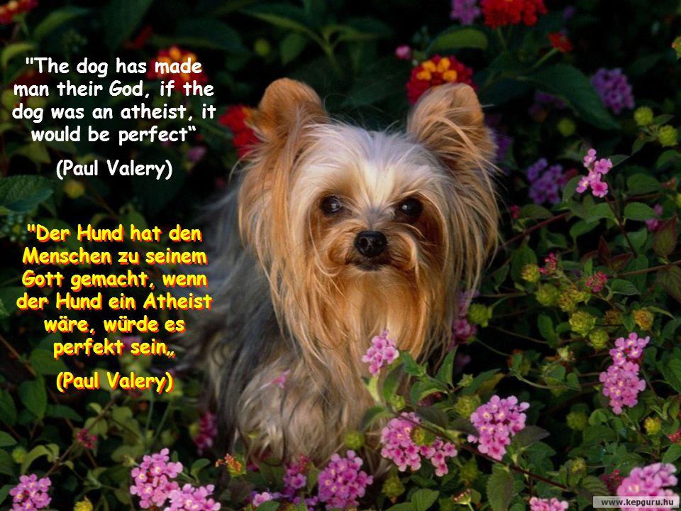 """The dog has made man their God, if the dog was an atheist, it would be perfect (Paul Valery) Der Hund hat den Menschen zu seinem Gott gemacht, wenn der Hund ein Atheist wäre, würde es perfekt sein"""" (Paul Valery) Der Hund hat den Menschen zu seinem Gott gemacht, wenn der Hund ein Atheist wäre, würde es perfekt sein"""" (Paul Valery)"""