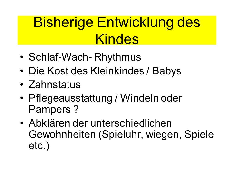 Bisherige Entwicklung des Kindes Schlaf-Wach- Rhythmus Die Kost des Kleinkindes / Babys Zahnstatus Pflegeausstattung / Windeln oder Pampers ? Abklären