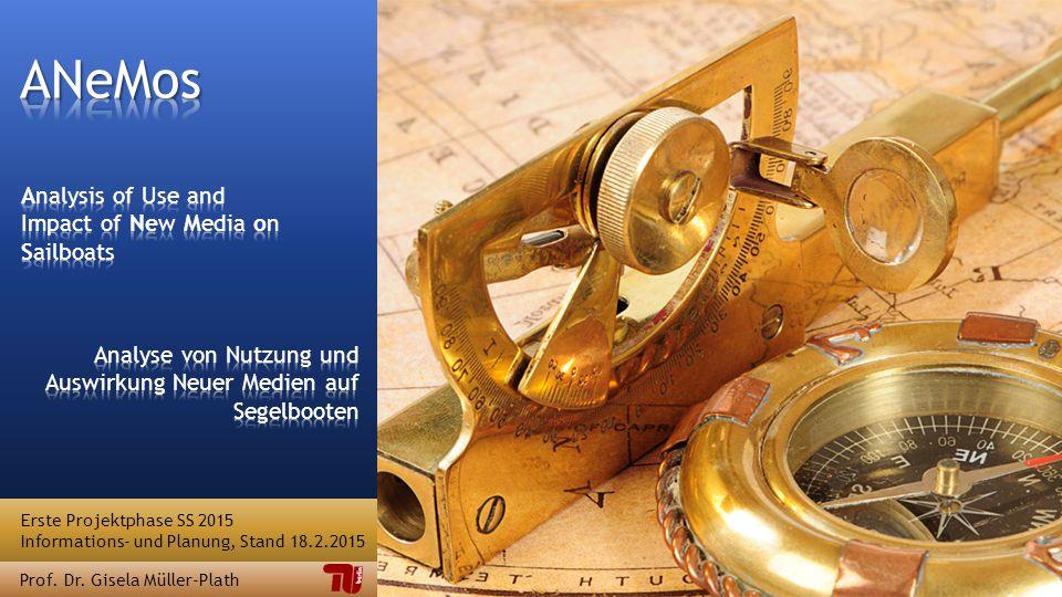 Erste Projektphase SS 2015 Informations- und Planung, Stand 18.2.2015 Prof. Dr. Gisela Müller-Plath