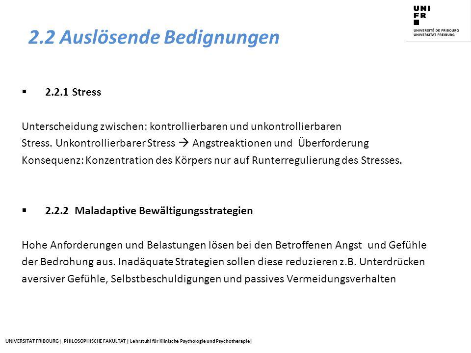 UNIVERSITÄT FRIBOURG| PHILOSOPHISCHE FAKULTÄT | Lehrstuhl für Klinische Psychologie und Psychotherapie| 2.2 Auslösende Bedignungen  2.2.1 Stress Unt