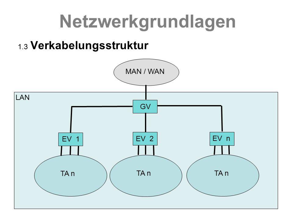 Netzwerkgrundlagen 1.3 Verkabelungsstruktur MAN / WAN LAN GV EV 1 EV 2 EV n TA n