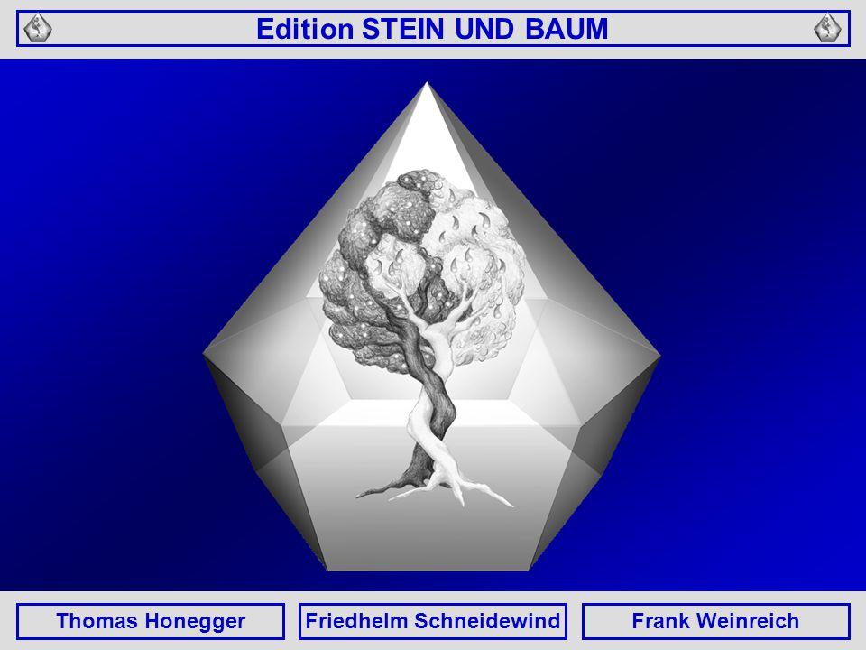 Edition STEIN UND BAUM Thomas HoneggerFriedhelm SchneidewindFrank Weinreich