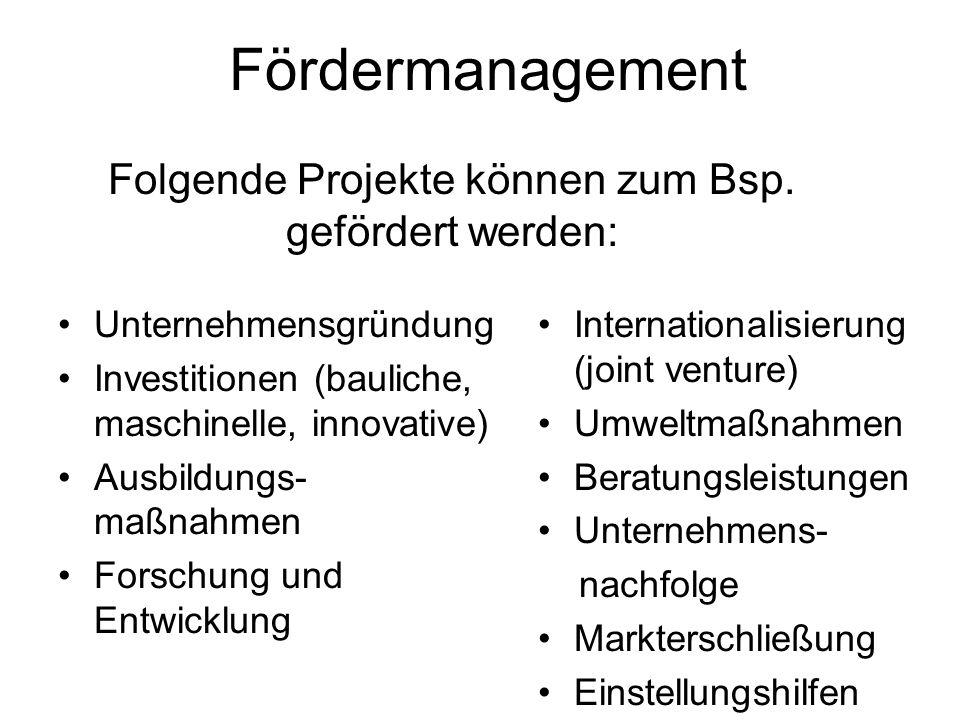Fördermanagement Unternehmensgründung Investitionen (bauliche, maschinelle, innovative) Ausbildungs- maßnahmen Forschung und Entwicklung International