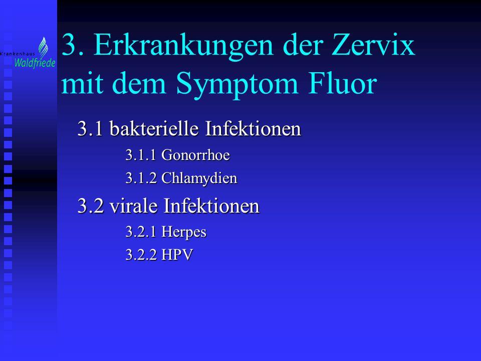 3. Erkrankungen der Zervix mit dem Symptom Fluor 3.1 bakterielle Infektionen 3.1.1 Gonorrhoe 3.1.2 Chlamydien 3.2 virale Infektionen 3.2.1 Herpes 3.2.
