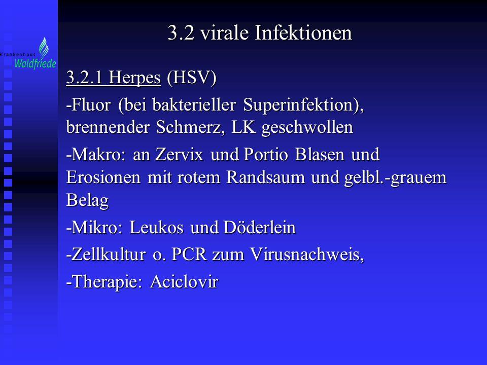 3.2 virale Infektionen 3.2.1 Herpes (HSV) -Fluor (bei bakterieller Superinfektion), brennender Schmerz, LK geschwollen -Makro: an Zervix und Portio Bl
