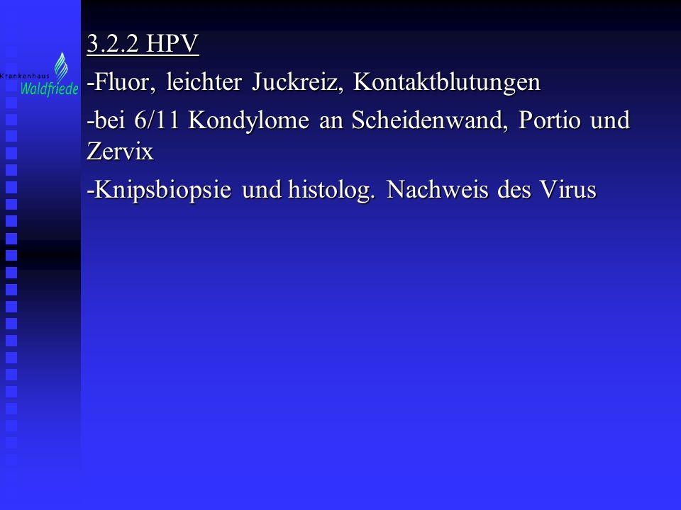 3.2.2 HPV -Fluor, leichter Juckreiz, Kontaktblutungen -bei 6/11 Kondylome an Scheidenwand, Portio und Zervix -Knipsbiopsie und histolog. Nachweis des