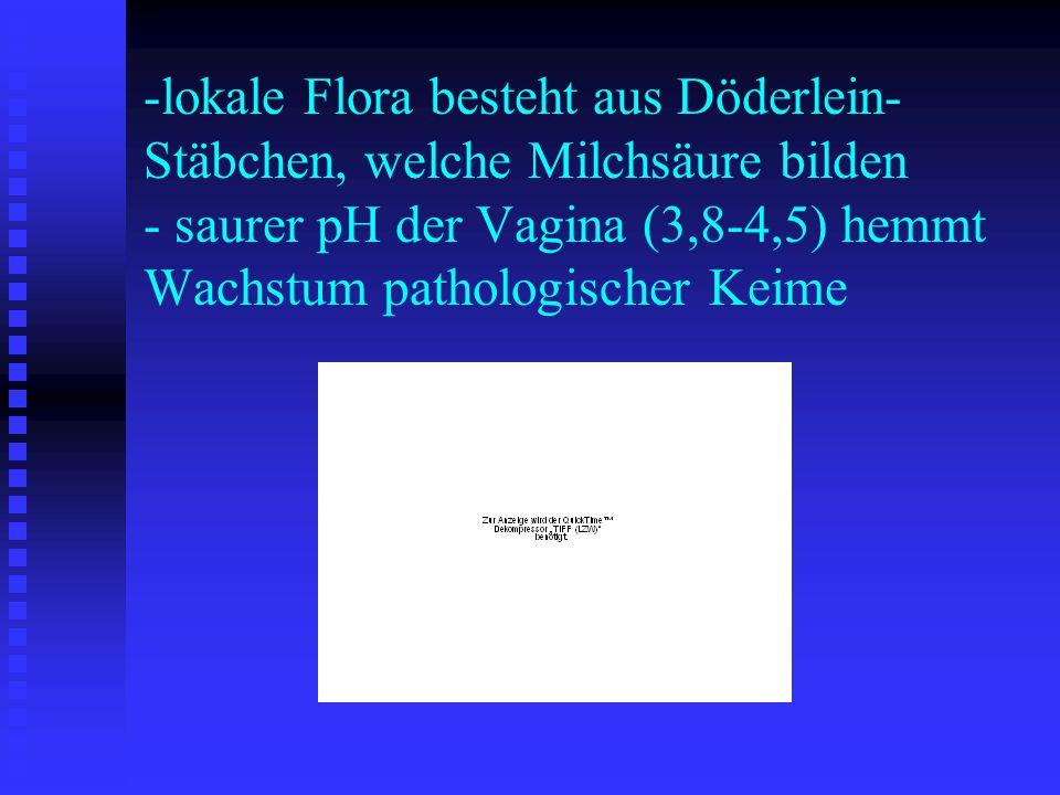 -lokale Flora besteht aus Döderlein- Stäbchen, welche Milchsäure bilden - saurer pH der Vagina (3,8-4,5) hemmt Wachstum pathologischer Keime