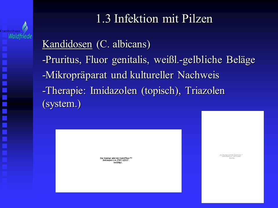1.3 Infektion mit Pilzen Kandidosen (C. albicans) -Pruritus, Fluor genitalis, weißl.-gelbliche Beläge -Mikropräparat und kultureller Nachweis -Therapi