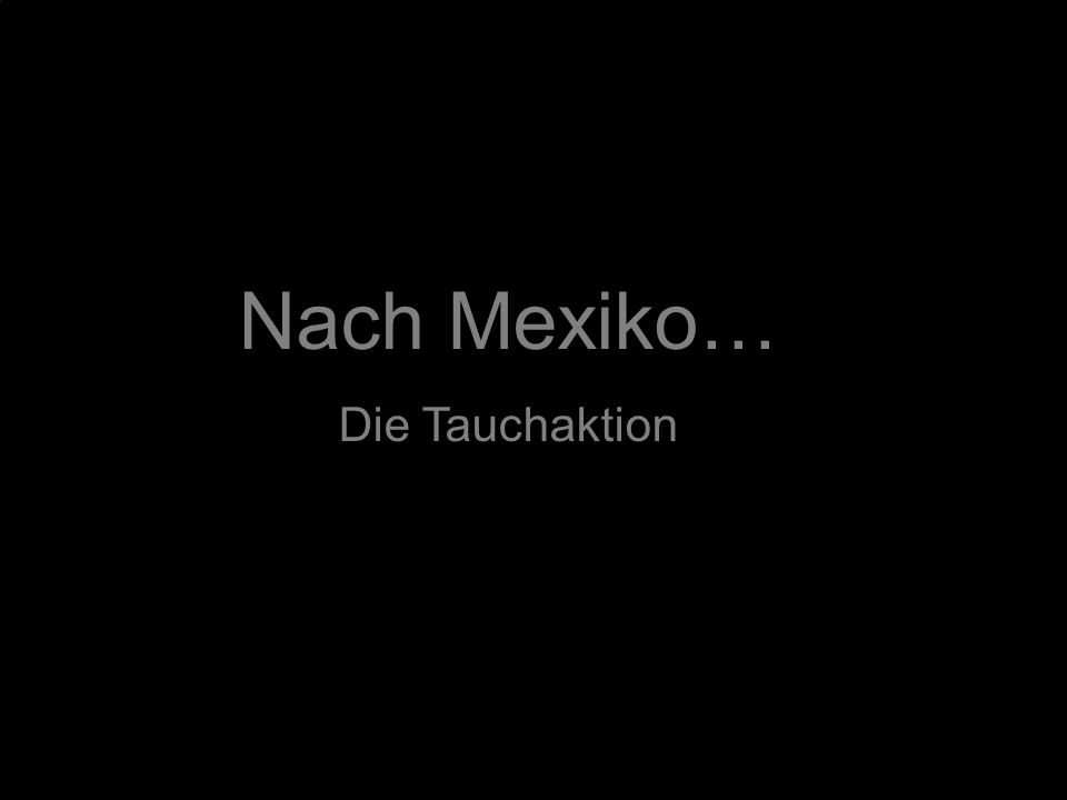 Nach Mexiko… Die Tauchaktion