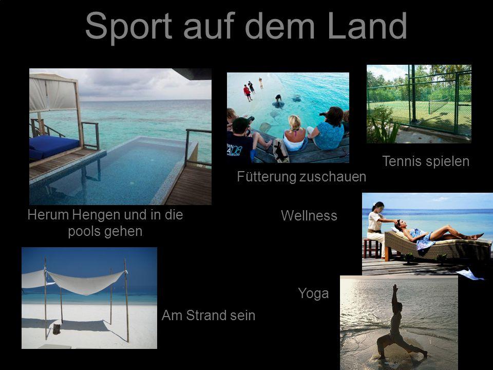 Sport auf dem Land Herum Hengen und in die pools gehen Tennis spielen Wellness Am Strand sein Fütterung zuschauen Yoga