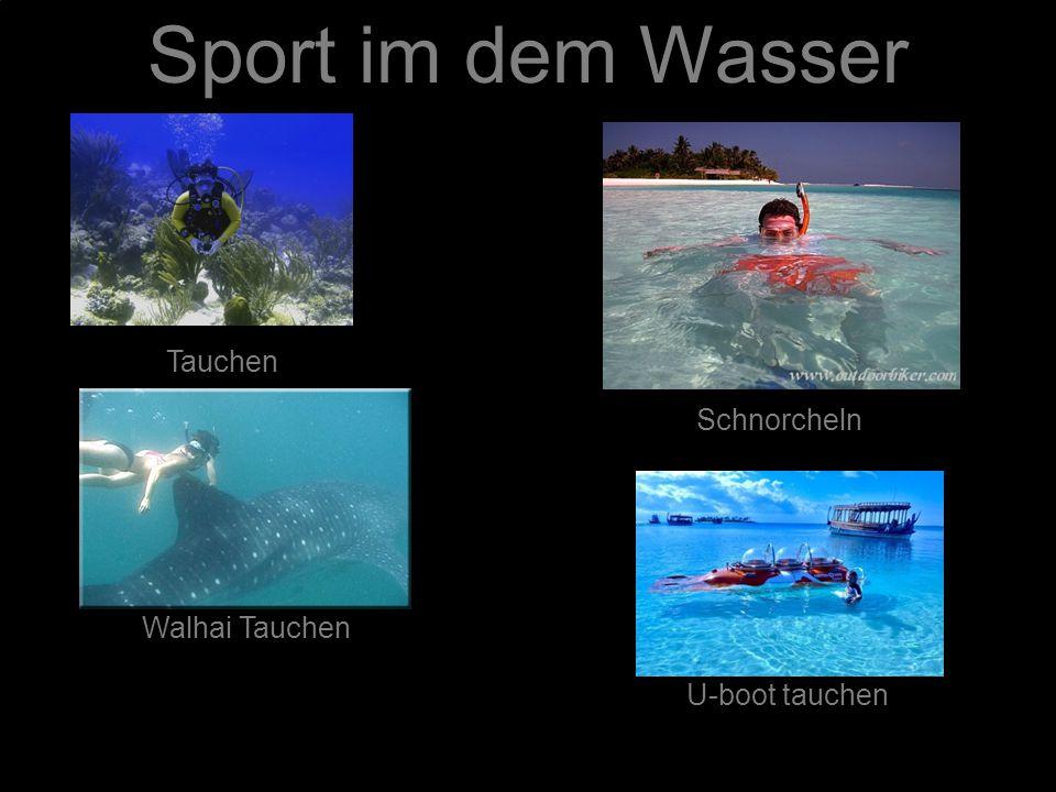 Sport im dem Wasser Schnorcheln Tauchen Walhai Tauchen U-boot tauchen