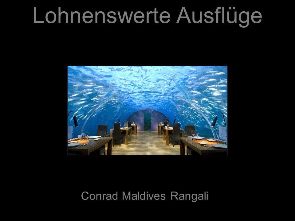 Lohnenswerte Ausflüge Conrad Maldives Rangali