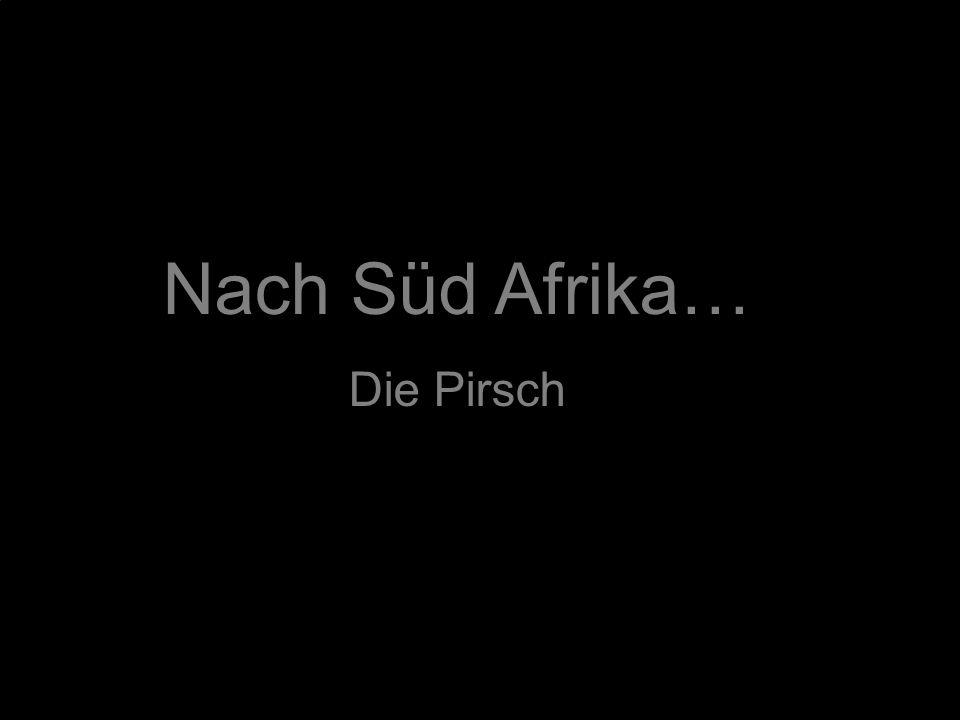 Nach Süd Afrika… Die Pirsch