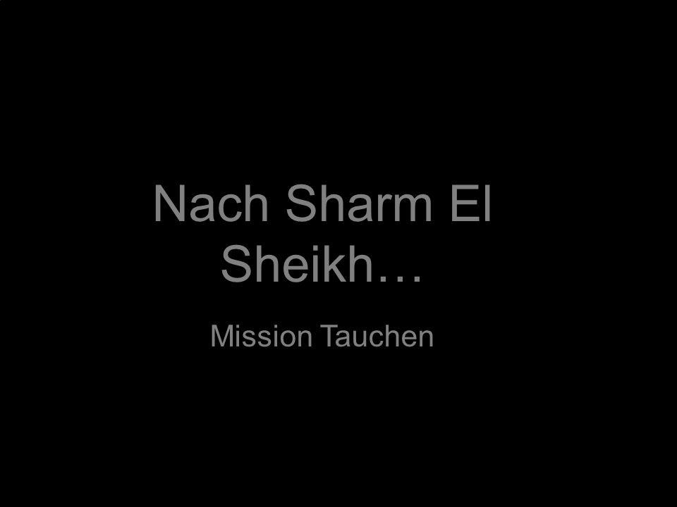 Nach Sharm El Sheikh… Mission Tauchen
