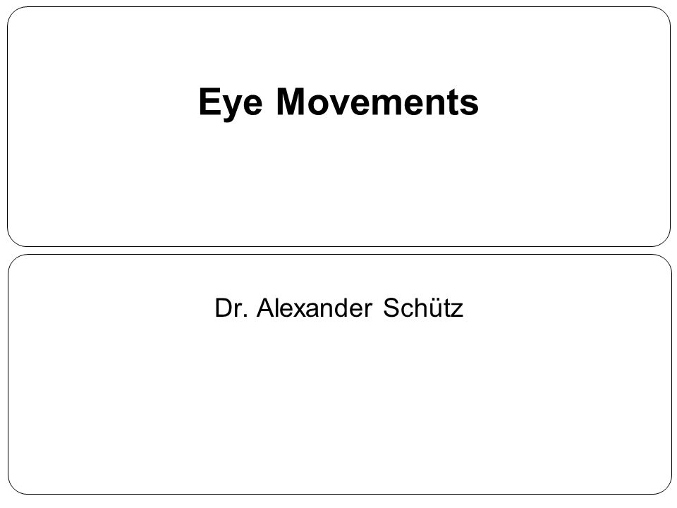 Eye Movements Dr. Alexander Schütz