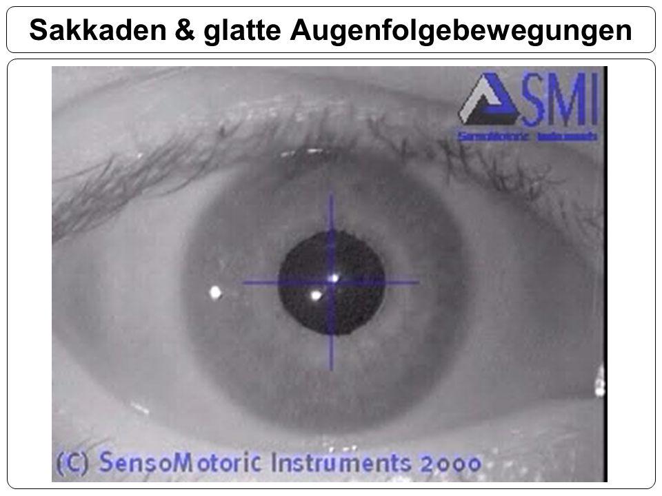 Sakkaden & glatte Augenfolgebewegungen