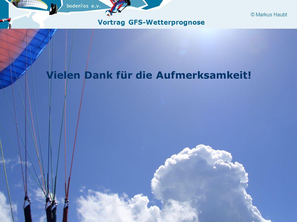 © Markus Haubt Vortrag GFS-Wetterprognose Vielen Dank für die Aufmerksamkeit!