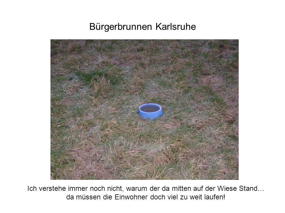 Bürgerbrunnen Karlsruhe Ich verstehe immer noch nicht, warum der da mitten auf der Wiese Stand… da müssen die Einwohner doch viel zu weit laufen!