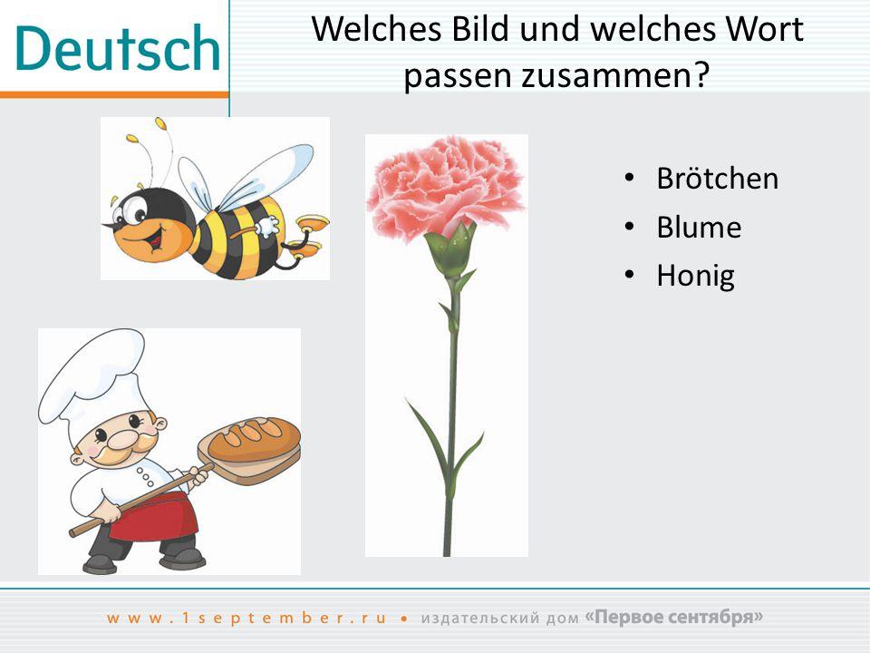 Welches Bild und welches Wort passen zusammen? Brötchen Blume Honig