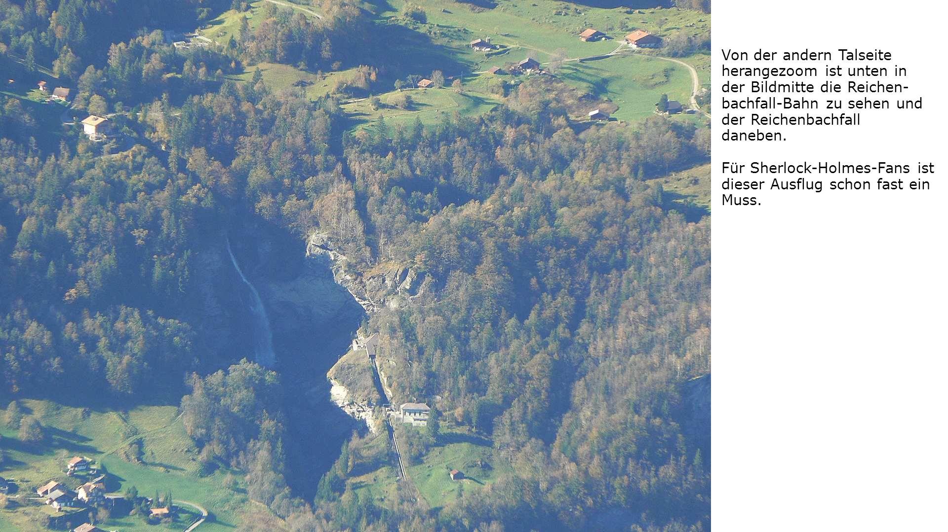 Von der andern Talseite herangezoom ist unten in der Bildmitte die Reichen- bachfall-Bahn zu sehen und der Reichenbachfall daneben.