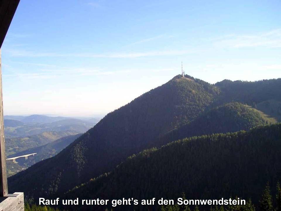 Der Talübergang Schottwien zählt mit 130 m Höhe und einer Länge von 632 m zu den großen Straßenbrücken Österreichs.
