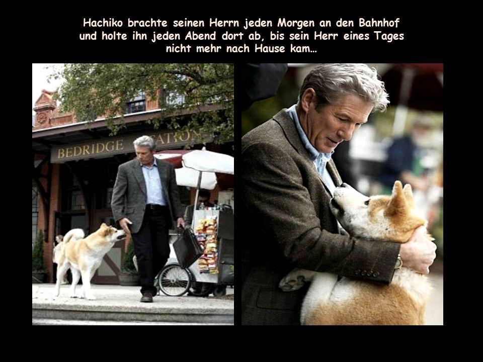Zwischen dem Professor und seinem Hund entwickelt sich eine wunderbare Freundschaft.