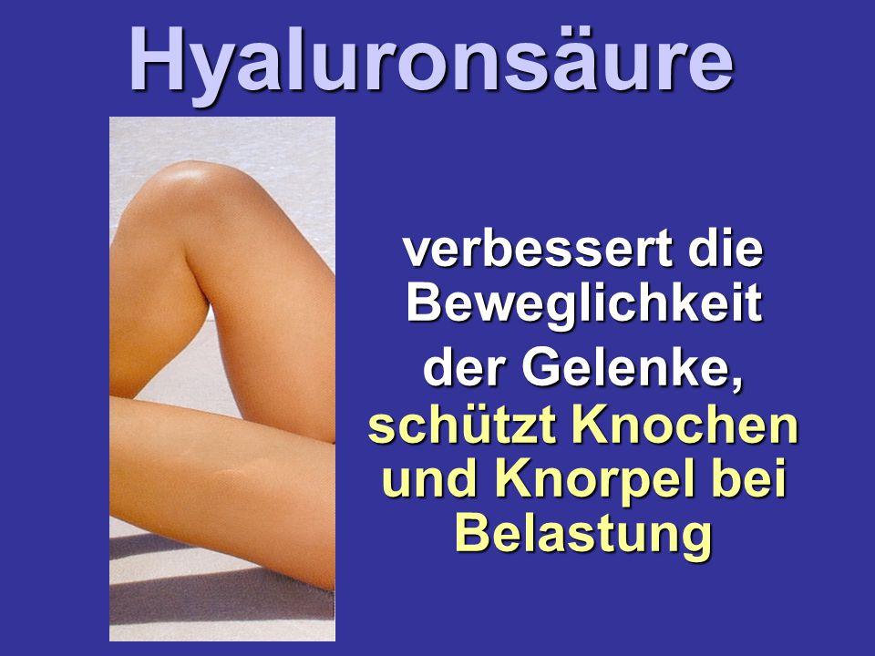 verbessert die Beweglichkeit der Gelenke, schützt Knochen und Knorpel bei BelastungHyaluronsäure