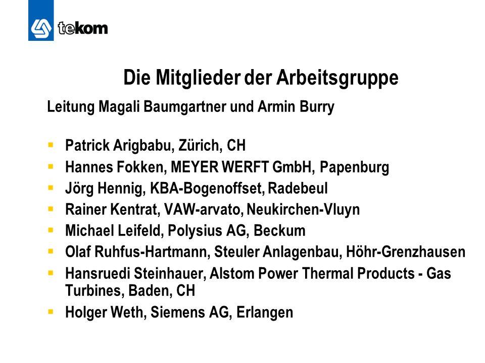 Die Mitglieder der Arbeitsgruppe Leitung Magali Baumgartner und Armin Burry  Patrick Arigbabu, Zürich, CH  Hannes Fokken, MEYER WERFT GmbH, Papenbur