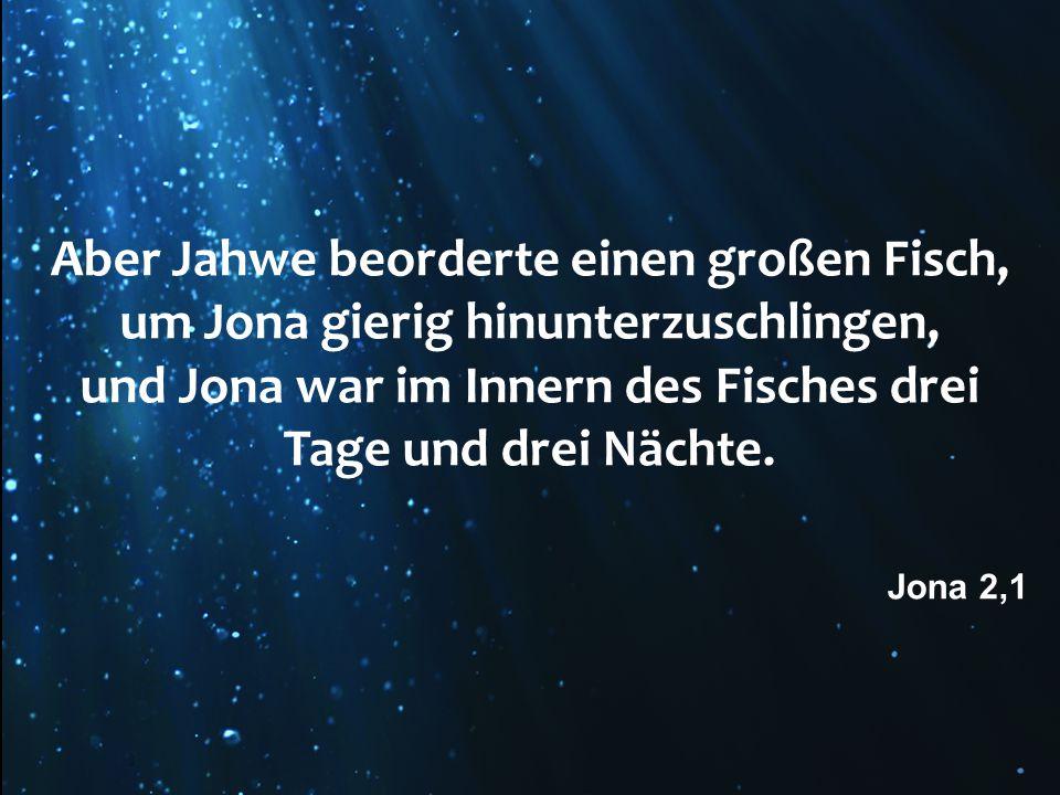 Aber Jahwe beorderte einen großen Fisch, um Jona gierig hinunterzuschlingen, und Jona war im Innern des Fisches drei Tage und drei Nächte. Jona 2,1