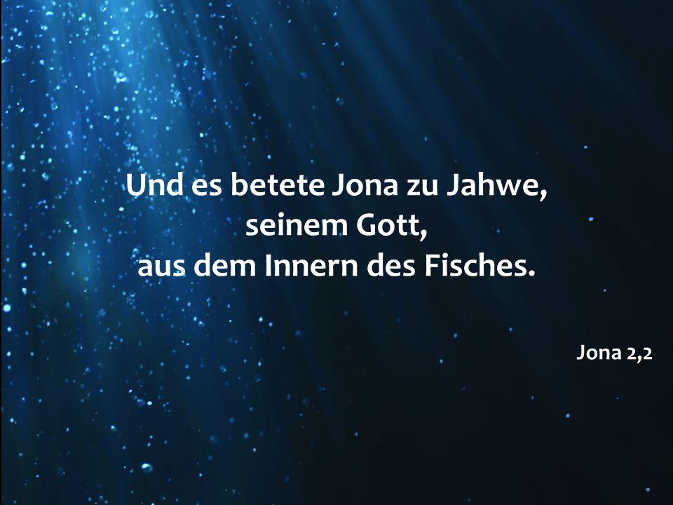 Und es betete Jona zu Jahwe, seinem Gott, aus dem Innern des Fisches. Jona 2,2