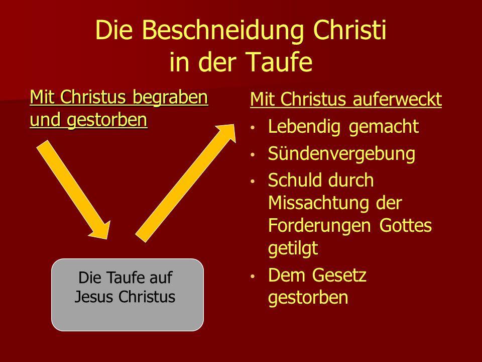 Die Beschneidung Christi in der Taufe Mit Christus begraben und gestorben Mit Christus auferweckt Lebendig gemacht Sündenvergebung Schuld durch Missachtung der Forderungen Gottes getilgt Dem Gesetz gestorben Die Taufe auf Jesus Christus