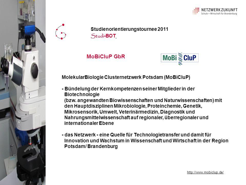 MoBiCluP GbR MolekularBiologie Clusternetzwerk Potsdam (MoBiCluP) - Bündelung der Kernkompetenzen seiner Mitglieder in der Biotechnologie (bzw.