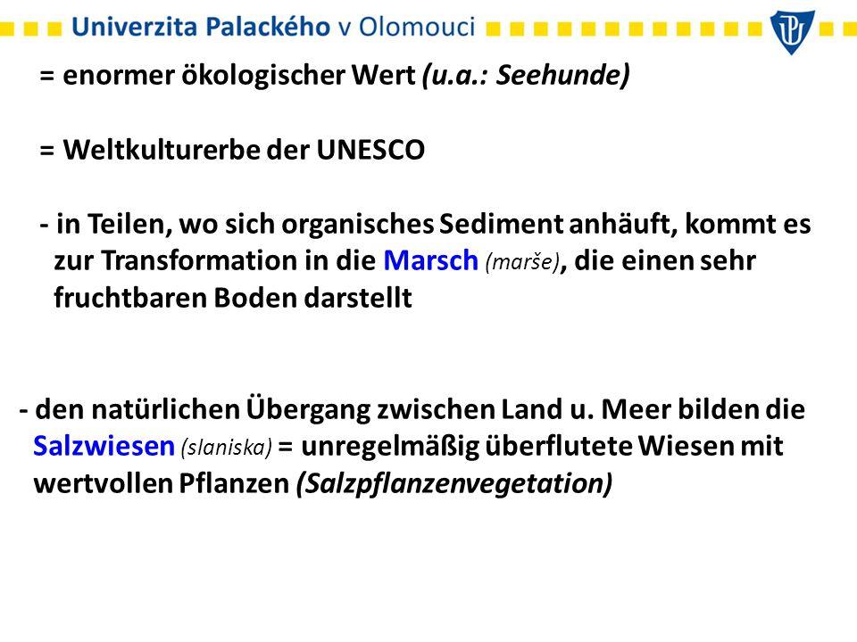 = enormer ökologischer Wert (u.a.: Seehunde) = Weltkulturerbe der UNESCO - in Teilen, wo sich organisches Sediment anhäuft, kommt es zur Transformatio