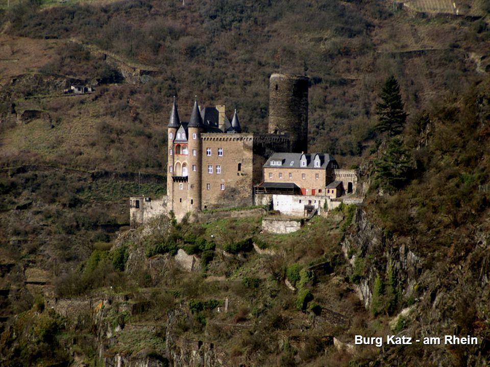 Burg Katz - am Rhein