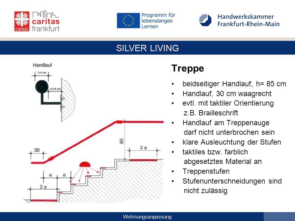 SILVER LIVING Wohnungsanpassung Treppe beidseitiger Handlauf, h= 85 cm Handlauf, 30 cm waagrecht evtl. mit taktiler Orientierung z.B. Brailleschrift H