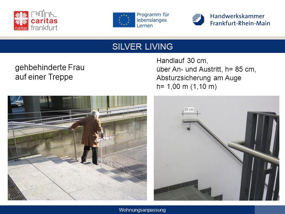 SILVER LIVING Wohnungsanpassung gehbehinderte Frau auf einer Treppe Handlauf 30 cm, über An- und Austritt, h= 85 cm, Absturzsicherung am Auge h= 1,00